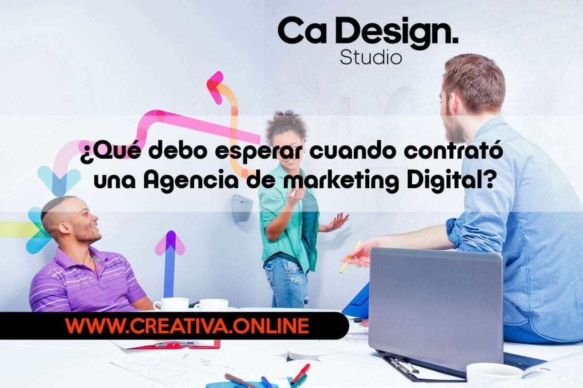 ¿Qué debo esperar cuando contrató una Agencia de marketing Digital?