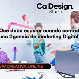 ¿Qué debo esperar cuando contrató una Agencia de marketing Digital?